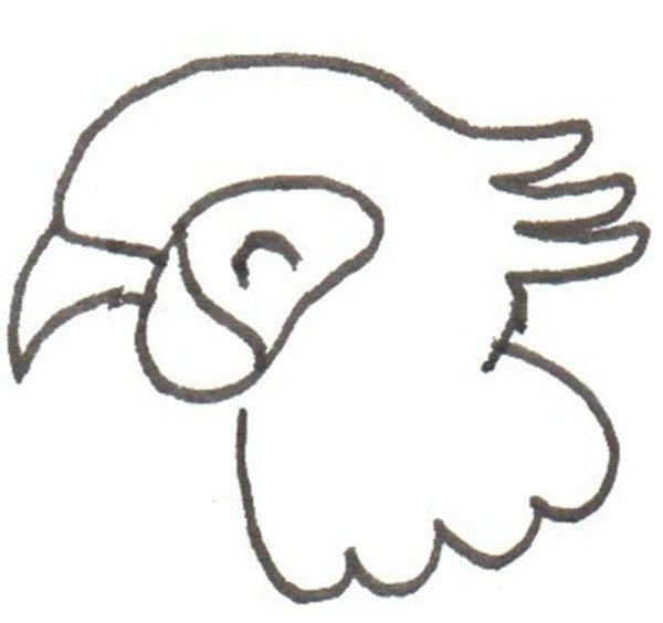 卡通画:鹦鹉的绘画步骤(2)