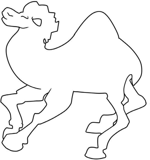 趣味简笔画:沉稳的骆驼绘画步骤(4)