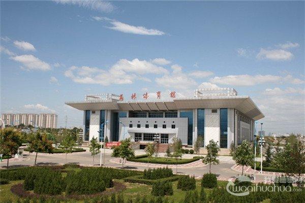 2017年陕西省使用美术联考成绩录取的高校名单