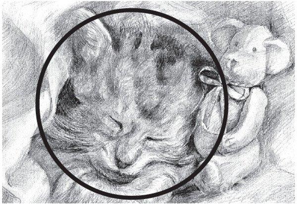 网球构图素描(2)_我爱技巧_画画画_教程学画网豆豆拼图纸素描图片