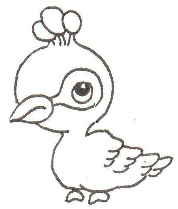 卡通画:孔雀的绘画步骤(3)