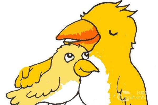 卡通画:黄鹂鸟妈妈和宝宝的绘画步骤