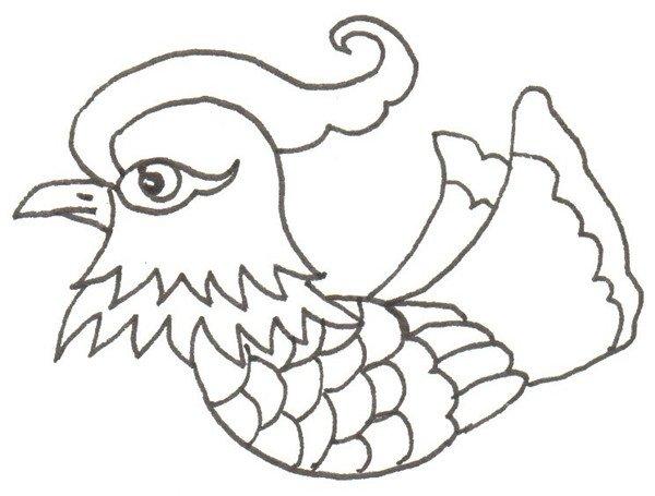 卡通画:鸳鸯的绘画步骤