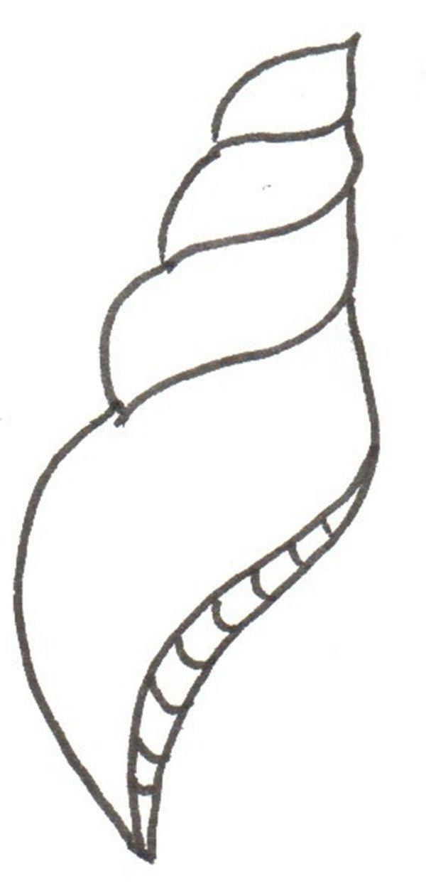 卡通画:海螺的绘画步骤(3)_儿童画教程_学画画_我爱