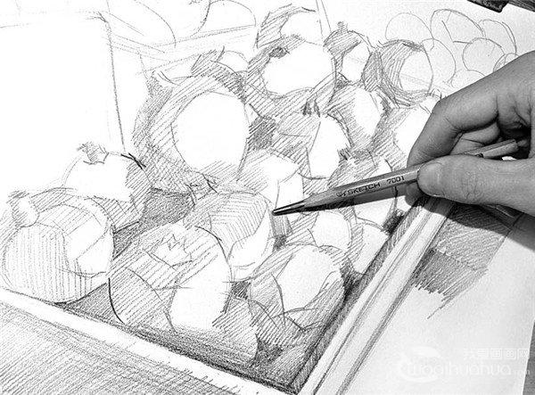 素描知识 > 素描技巧:水果摊一角绘画步骤(2)      5,基本结构完成后