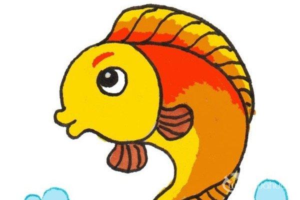 卡通画:小鲤鱼的绘画步骤