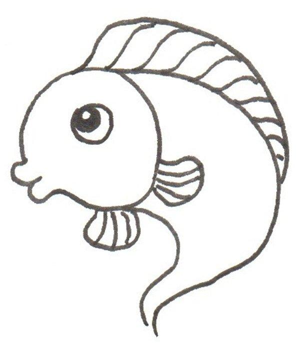卡通画:小鲤鱼的绘画步骤(2)