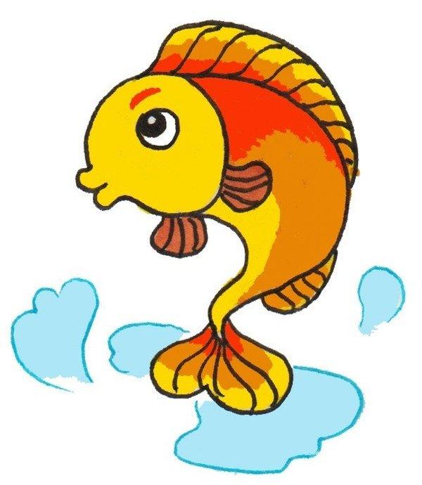 卡通画:小鲤鱼的绘画步骤(3)