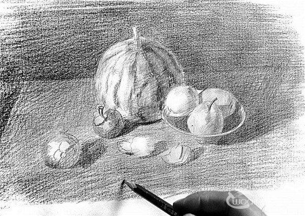 11、用橡皮擦去西瓜亮部的多余的色调子,然后再给其他水果增加灰色调子,加强立体感的表现。  素描水果的绘画步骤11 12、随着整体色调的变化,继续加深餐桌,使其色调跟上整体色调的变动。  素描水果的绘画步骤12 13、剥开橘子的造型是不规则的,我们可以按照球体的意识来仔细刻画细节特征部分。  素描水果的绘画步骤13 14、在调整阶段,不断地细致刻画,然后不时地退远整体观察,确保画面黑白灰的统一性。  素描水果的绘画步骤14  完成图 绘画时用橡皮擦去西瓜亮部的多余的色调子,然后再给其他水果增加灰色调子,加