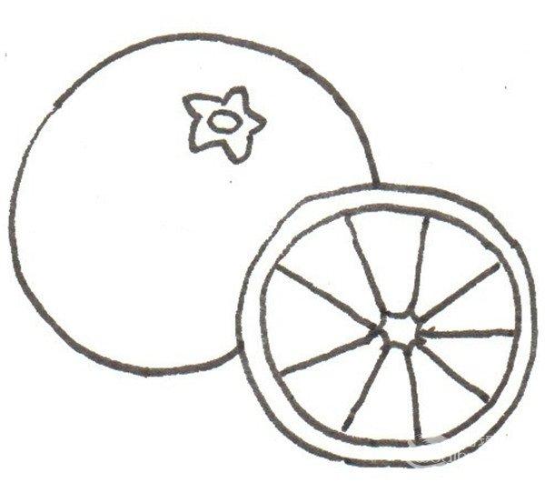 卡通画:橙子的绘画步骤(3)