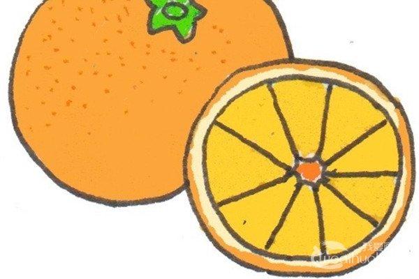 卡通画:橙子的绘画步骤