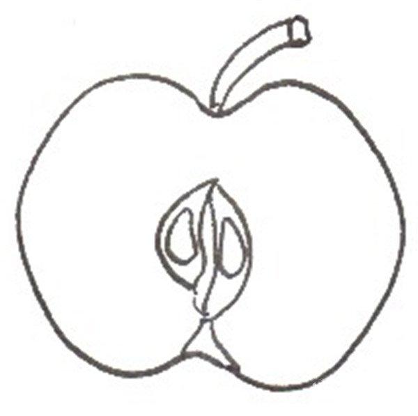 卡通画红苹果的绘画步骤二