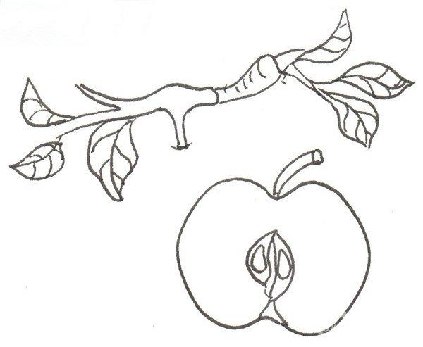 卡通画:红苹果的绘画技法(2)_儿童画教程_学画画_我爱