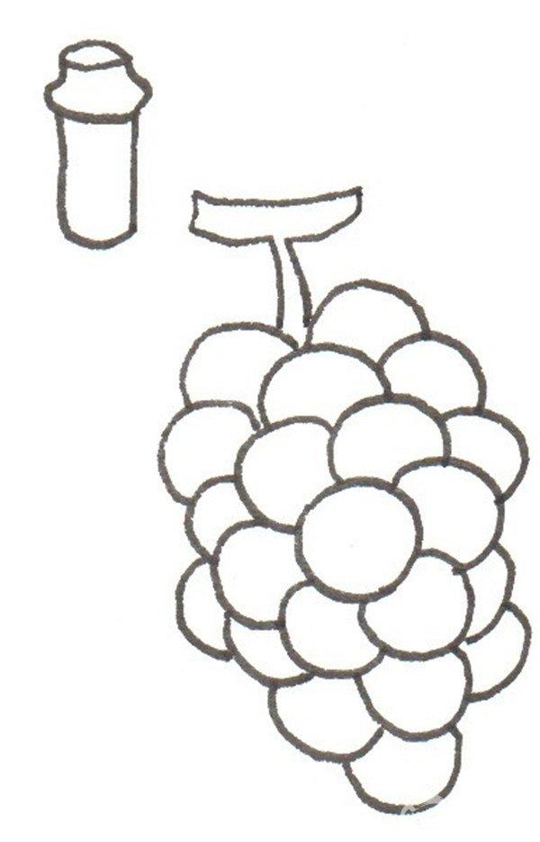 ④在左边先画酒瓶的头部。  卡通画葡萄酒的绘画步骤四 ⑤画出一个完整的酒瓶。  卡通画葡萄酒的绘画步骤五 ⑥先给葡萄涂上紫色。  卡通画葡萄酒的绘画步骤六