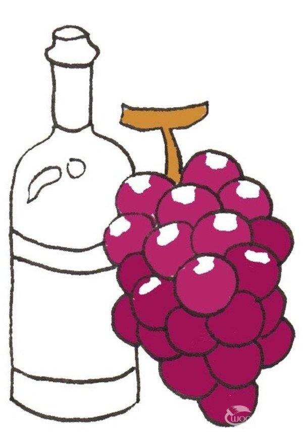 卡通画葡萄酒的绘画步骤四 ⑤画出一个完整的酒瓶.