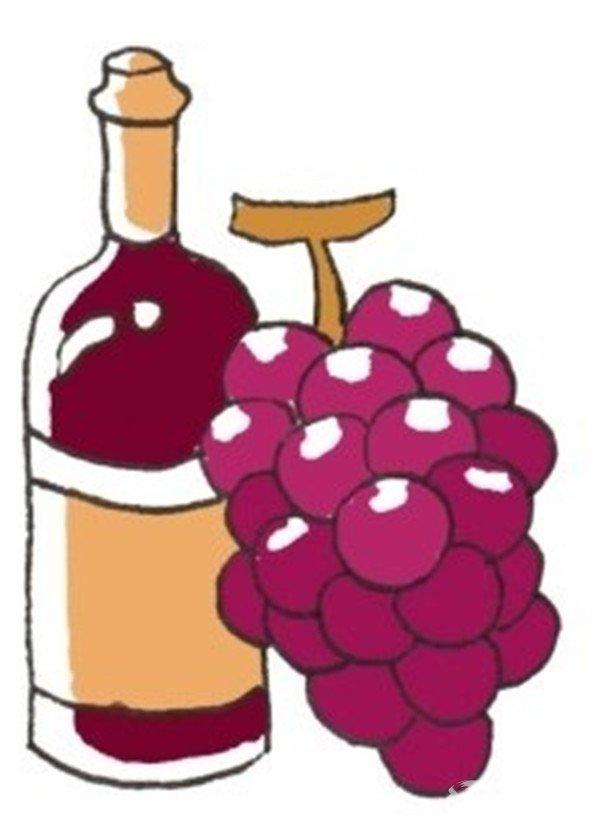卡通画:葡萄酒的绘画步骤(3)