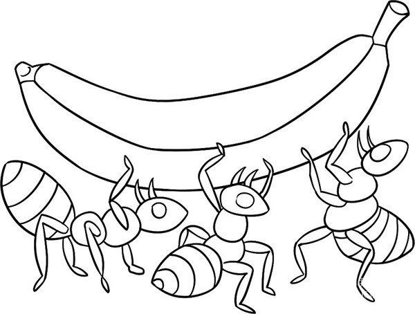 趣味简笔画:蚁多力量大绘画步骤四 蚁巢一般都不大,最多只有几百多只