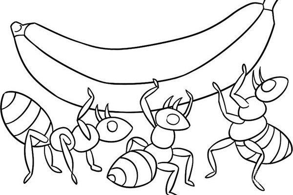 趣味简笔画:蚁多力量大绘画步骤