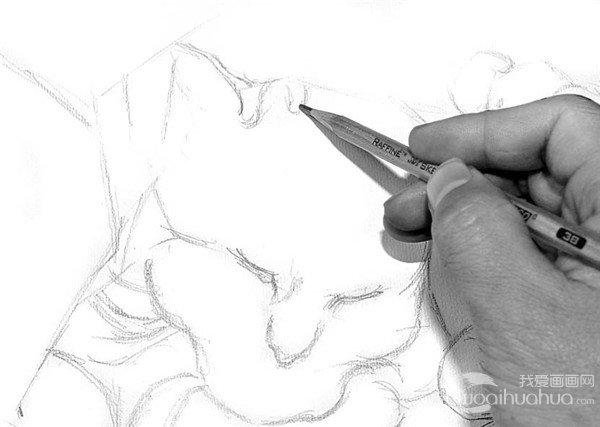 素描:小猫的绘画步骤(2)