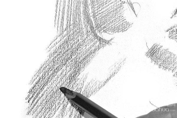 学画画 素描教程 素描动物 > 素描:狮子的绘画步骤(2)             &