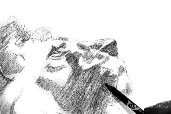 学画画 素描教程 素描动物 > 素描:狮子的绘画步骤(2)      6,同时