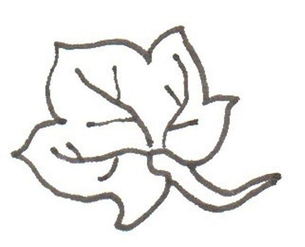 卡通画:南瓜的绘画步骤