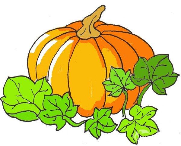 卡通画南瓜的绘画步骤六 ⑦给叶子和柄上色,完成.