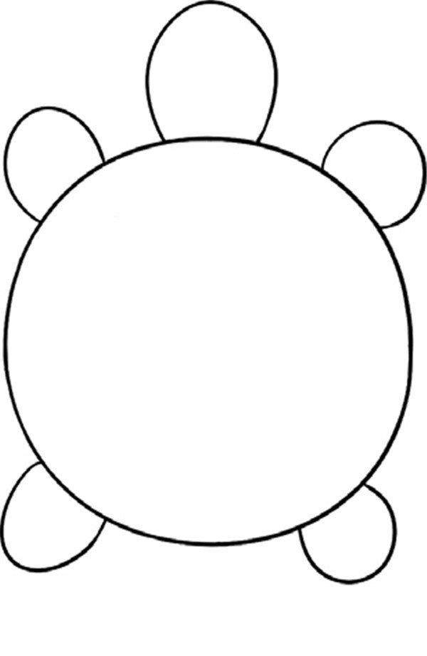 趣味简笔画:缓慢的乌龟绘画步骤(3)
