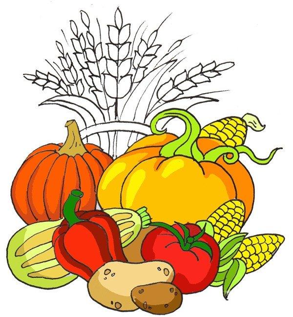 土豆是棕色,辣椒和西红柿是红色,西葫芦是浅绿色,玉米是黄色。  卡通画丰收的绘画步骤七 给两个南瓜涂上深浅不同的橘色。  卡通画丰收的绘画步骤八 给麦子上色,加投影,完成。  卡通画丰收的绘画步骤九 PS:当我们吃着美味的蔬菜,不要忘记菜园里、农田里辛苦的农民伯伯~