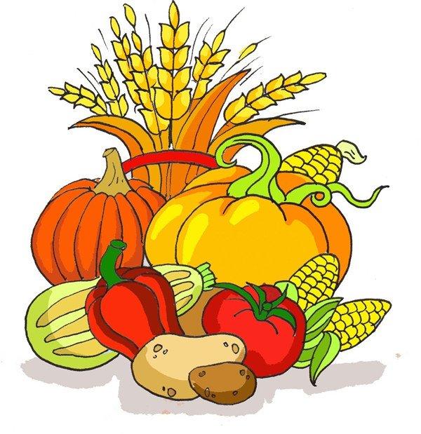 丰收的绘画步骤(4)      ⑦土豆是棕色,辣椒和西红柿是红色,西葫芦是