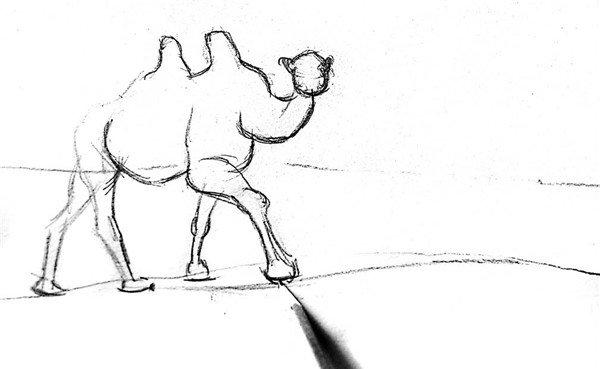 素描:骆驼的绘画步骤