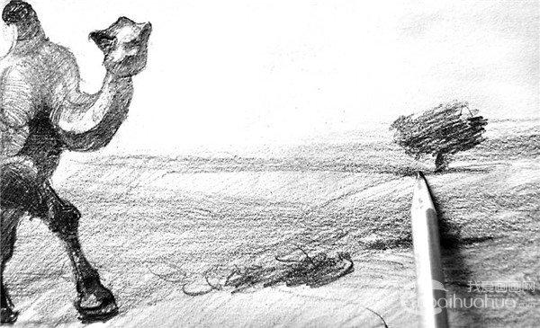 16、仔细描绘近处杂草,有主有次,深浅变化,尽可能表现得丰满一些。  素描骆驼的绘画步骤16 17、稍远一点的杂草,可以寥寥几笔,一带而过,与近处的杂草形成一定的空间效果。  素描骆驼的绘画步骤17 18、用同一方向的线条概括地塑造远处小灌木,简单拉开明暗变化。  素描骆驼的绘画步骤18 19、远处小树,可以草草几笔一带而过,与近处的杂草形成空间对比。  素描骆驼的绘画步骤19