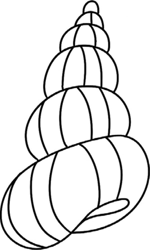 学画画 儿童画教程 简笔画 > 趣味简笔画:旋转的海螺绘画步骤(4)