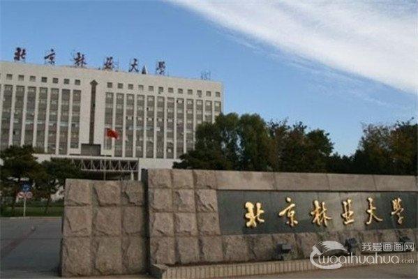 2017年北京林业大学美术类校考合格分数线