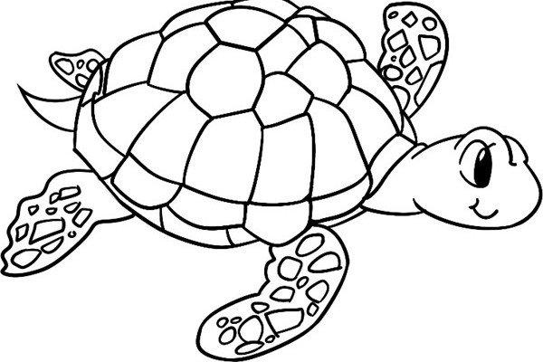 趣味简笔画:游行的海龟