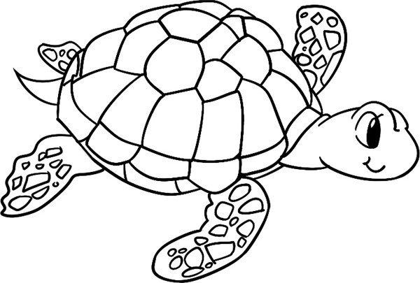 趣味简笔画:游行的海龟(4)_儿童画教程_学画画_我爱