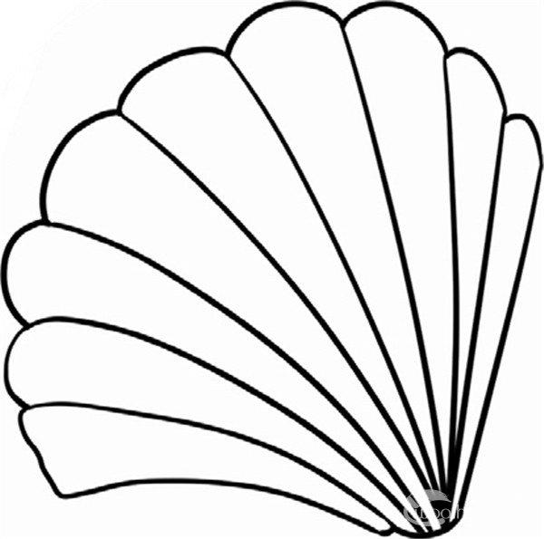 趣味简笔画:紧扣的贝壳绘画步骤(4)