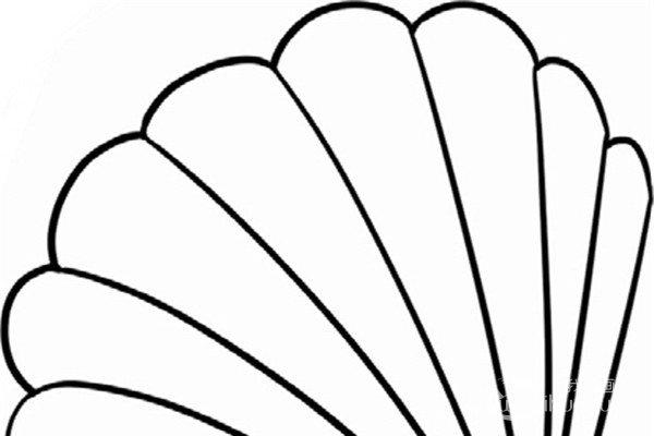 趣味简笔画:紧扣的贝壳绘画步骤