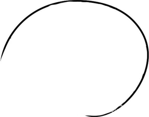 趣味简笔画:探出头的海螺绘画步骤