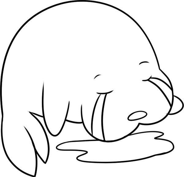 趣味简笔画:哭泣的海狮绘画步骤(4)