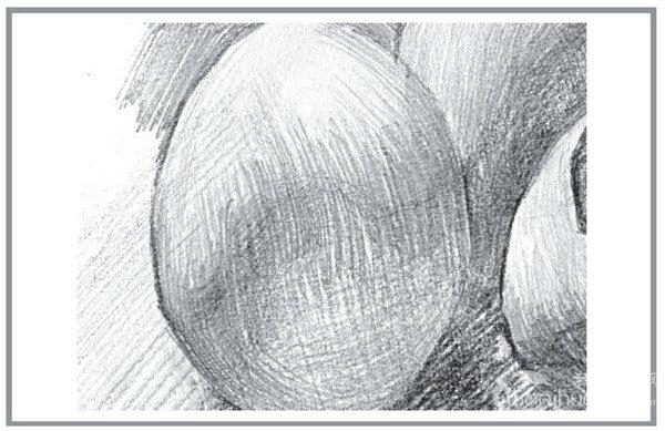 4、逐个进行深入塑造,注意蛋壳表面的光滑表现。 素描蛋壳的哀伤的绘画步骤4 素描蛋壳的哀伤的绘画步骤4-1 素描蛋壳的哀伤的绘画步骤4-2 素描蛋壳的哀伤的绘画步骤4-3 素描蛋壳的哀伤的绘画步骤4-4
