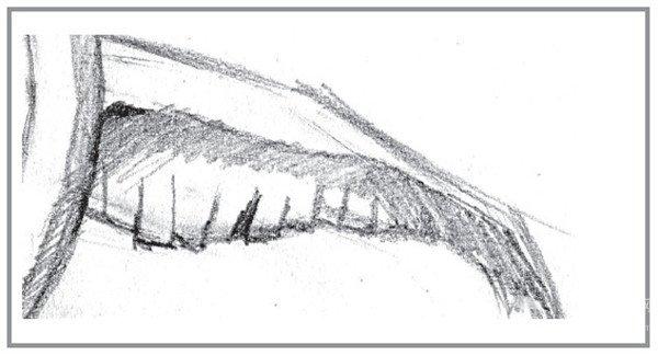 静物素描:时间的流逝的绘画技巧(4)图片