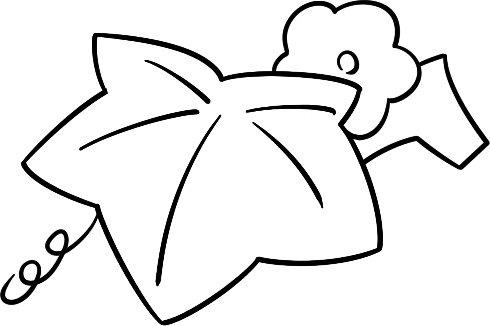 趣味简笔画 憨厚的冬瓜绘画步骤 2