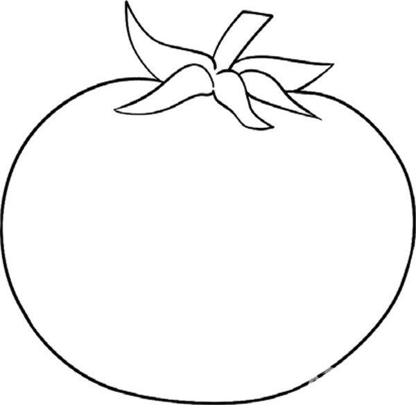 趣味简笔画 鲜美多汁的西红柿绘画步骤 2
