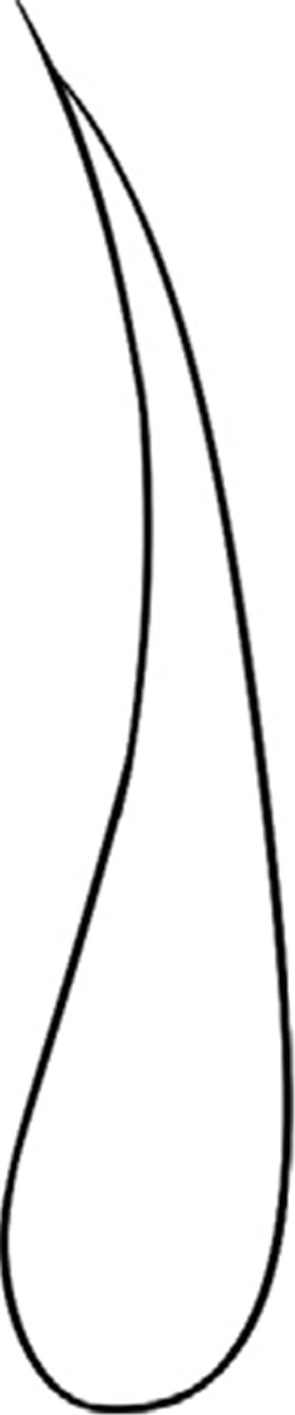 趣味简笔画:刺鼻的葱绘画步骤