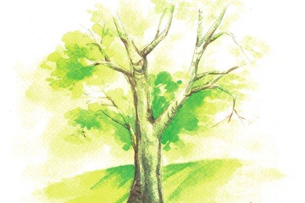 水彩技巧:绘制枯树的树干的技巧