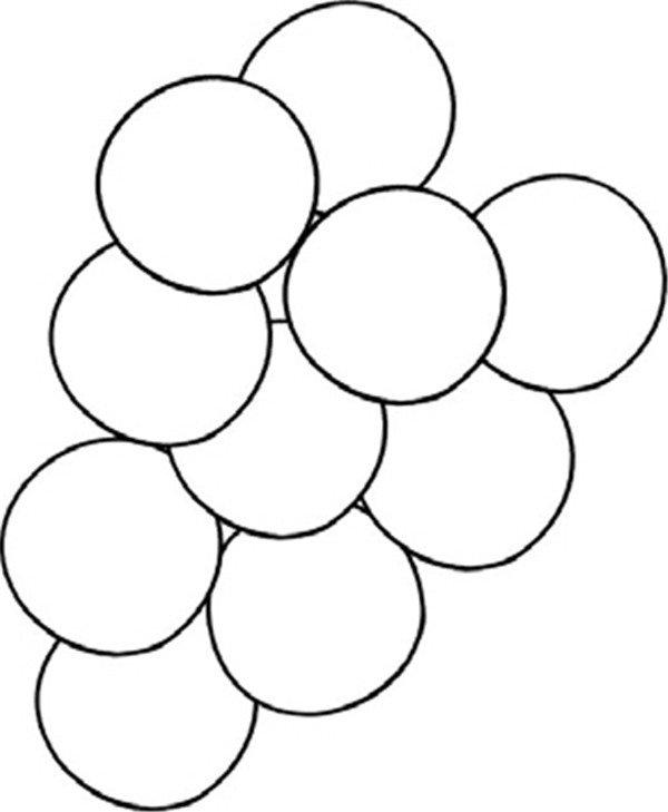 趣味简笔画:一串葡萄绘画步骤(2)_儿童画教程_学画画