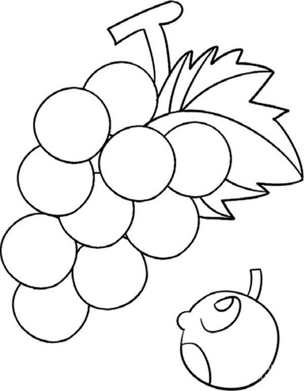 趣味简笔画:一串葡萄绘画步骤四-趣味简笔画 一串葡萄绘画技巧教程 图片